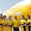 ノックスクート、機体と制服デザイン くちばしと黄色