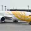 スクート、冬季限定で札幌直行便 787-9で週2往復増便、3時間短縮