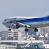 ANAグループ、奄美・琉球の世界遺産登録支援 バニラ機体にロゴ