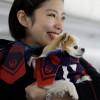 JAL、愛犬と一緒に沖縄 3月にワンワンJET第2弾