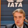 IATA事務総長、羽田着陸料値上げ「慎重に考えて」
