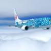 JTA、新ジンベエジェット11月就航 現行機は退役へ