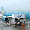 ベトナム航空、ANA製の機内食 羽田発便、資本提携で
