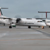 RAC、Q400CCに機材更新完了 5機体制に、離島の通販需要支える
