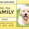 JAL、ペットにもマイル 顔写真付き会員証