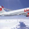 ライオン・エア、A320neoなど234機発注