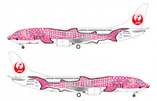 JTA、ジンベエジェット2号機就航へ 1月上旬から