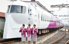 ピーチ塗装「ラピート」、運行終了ツアー 和歌山港駅乗り入れへ