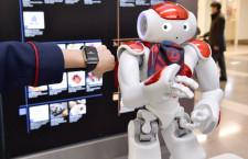 ロボットとApple Watchで空港接客支援 JALと野村総研、羽田で実験