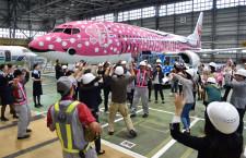 ジンベエジェットでサプライズ JALとJTA、沖縄でFacebookイベント