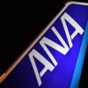ANAの19年3月期、売上高2兆円突破 営業益0.3%増