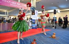 ハワイアン航空、羽田-コナ就航 深夜便で週3往復