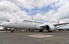 JAL、羽田発着ハワイ気分チャーター第2弾 機内食付き3時間フライト