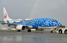 JAL、中部-那覇に就航30周年運賃 早期割引で8300円から