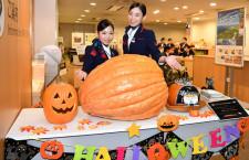 ジャンボカボチャは何キロ? JAL、羽田でハロウィン仮装係員出迎え