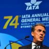 空港民営化「慎重に」IATA年次総会、政府に警鐘鳴らす