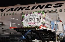 ボジョレー・ヌーボー初荷、5年ぶりJAL便で羽田到着