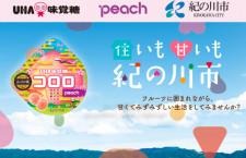 ピーチ、和歌山・紀の川市産モモ使用のグミ 味覚糖とコラボ