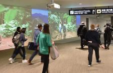 成田空港の訪日客、過去最高175万人 総旅客数357万人 19年4月