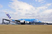 ANA、A380「フライング・ホヌ」成田到着 片野坂社長「乗った瞬間ハワイ感じられる」