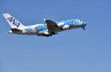ANA、A380夏休みチャーター8月に7回 子供向け機内食も