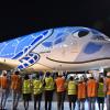 ANA、A380就航 空飛ぶウミガメ、成田からハワイへ
