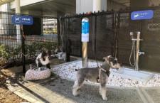伊丹空港に愛犬専用トイレ