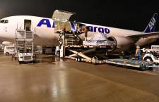 ANAカーゴ、武漢から成田へ貨物臨時便 自動車部品やマスク運ぶ