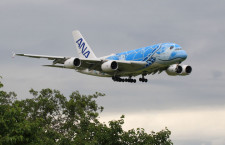 ANA、A380初号機も3カ月ぶりフライト 40分で成田戻る