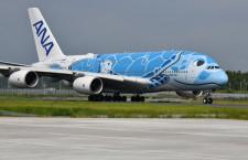 ANAのA380、関空・中部でも遊覧飛行 青い初号機、4月週末に