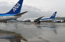 ANA、11月の国内線搭乗率61.5% 国際線は18.8%