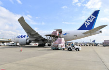 ANA、成田-バンコク線に大型貨物機777F投入 自動車部品好調、東南アジアから北米へ