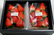 JAL、成田でイチゴ直売 空港近くの自社農園・レストラン御料鶴で