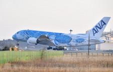 初の重整備迎えた空飛ぶウミガメ 特集・ANA A380就航2周年