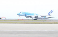 ANA、中部でもA380遊覧飛行 倍率5倍