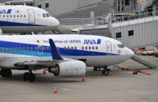 ANA、退役デカール貼った737-700運航開始 リボンはゴールド