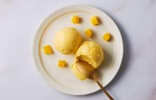 JAL通販サイト、宮崎県産マンゴーのアイスクリーム