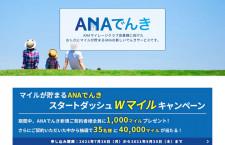 ANA、電気代でマイル 「ANAでんき」26日開始