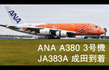 【4K】滑走路横から撮ったANA A380 3号機成田着陸【JA383A】