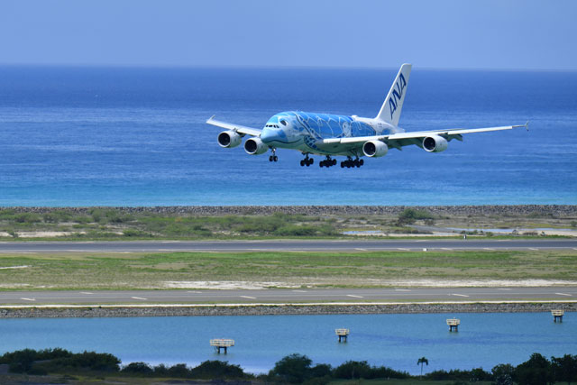 ほかの飛行機より静かだよね 搭乗記 空飛ぶウミガメ Ana A380 前編