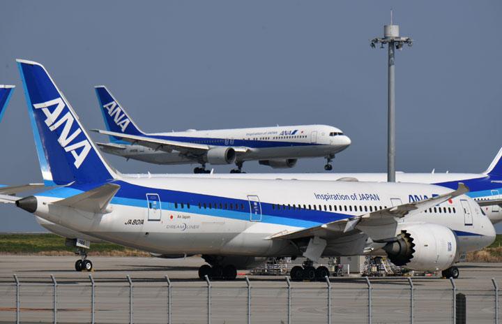 ANA国内線、8月は77%運航に 新型コロナで減便増、お盆は88%