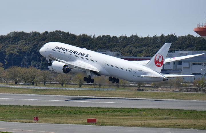 JAL、国際線復便検討 帰省や赴任需要、7月の国際線減便は9割続く