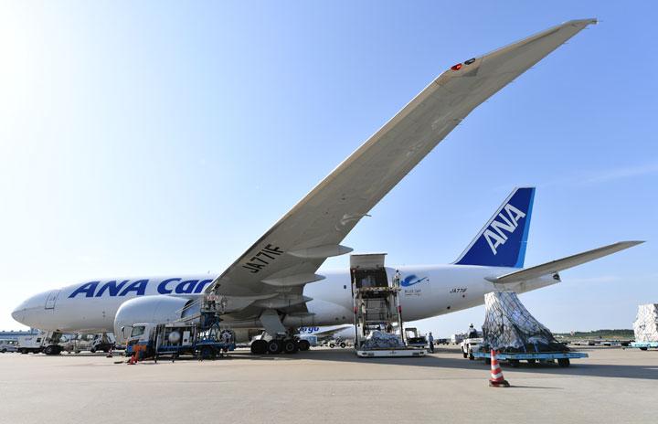 ANA、cargo.oneのウェブサイトで貨物スペース予約