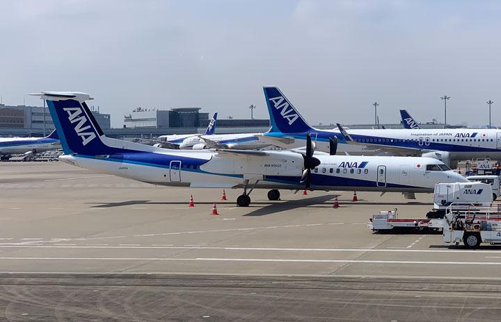 ANA、Q400羽田便21日まで プロペラ機6年ぶり
