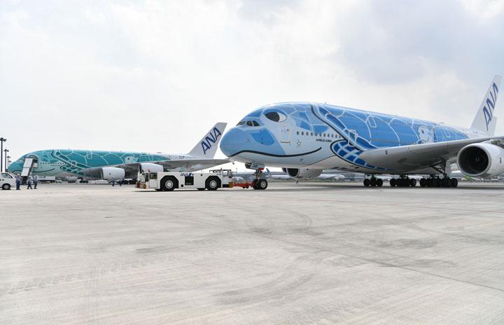 ANA、A380で春休みチャーター 成田発着、3月に2回