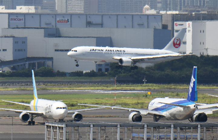 JAL、見える人にしか見えない特別塗装機 アマビエJET、おなかに注目