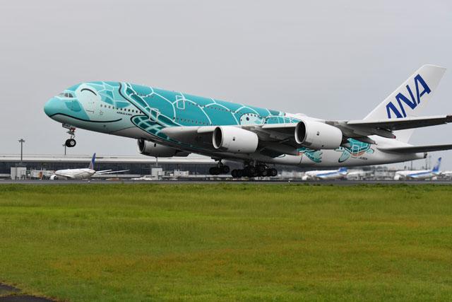 飛行 遊覧 JALの周遊遊覧飛行第3弾 「ハワイ気分