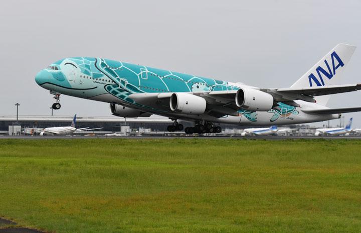 """ANA""""空飛ぶウミガメ""""A380、遊覧飛行2回目は緑の2号機 倍率110倍"""