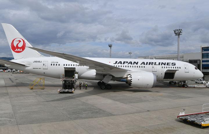 JALの787、不具合で伊丹発羽田行き欠航 202人影響、貨物室外側パネルか