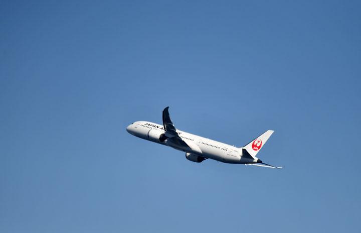 JALとウェザーニューズ、飛行機の揺れ防ぐ仕組み共同構築 乗客やCAのけが防止に